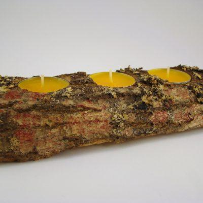tronco-espinhosa-3-velas-amarelas-foto-1